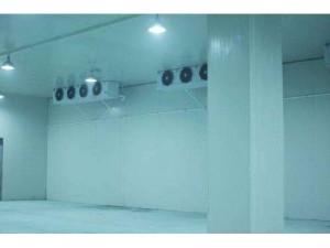 专业回收二手氟机冷库,专业回收二手蒸发冷