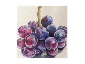 北京艺术美术绘画培训教学美术绘画人生学习的美学艺术之一