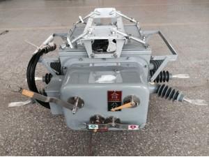 带隔离ZW20-12高压真空断路器配避雷器