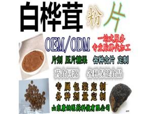 白桦茸粉 白桦茸多糖30% 可制粒可压片 QS 贴牌代加工