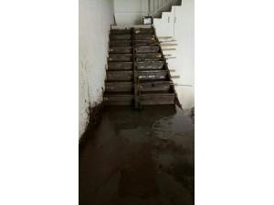 廊坊广阳区家庭浇筑楼梯 楼浇筑植筋加制作楼板