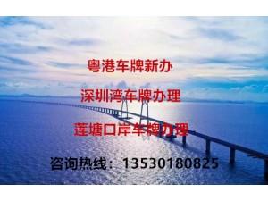 中港两地车牌注册转让审批费用