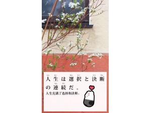 东莞南城哪里有日语全日制培训