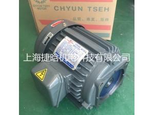 台湾群策CHYUN TSEN 电机 C02-63B0油泵电机