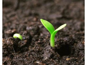 广东土壤地下水污染排查与自行监测公司