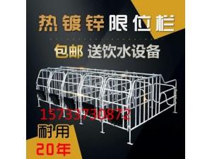 猪产床双体母猪产床仔猪分娩床母猪产保一体产床定位栏保育床