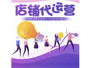 广西南宁专业网店专业托管服务