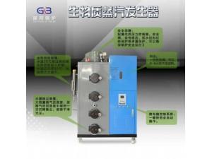 国邦锅炉生物质蒸汽发生器300公斤