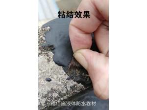 广东液体防水卷材值得你信赖 福佰施 加盟厂家