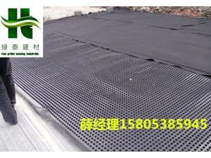 泰安凹凸1.2cm排水板-高分子车库排蓄水板