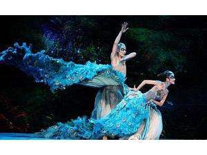 龙飞独家高端舞蹈《雀之恋》