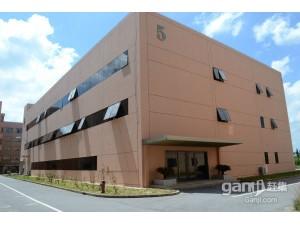 金山朱泾工业区独栋4500元平方三层绿证50出售