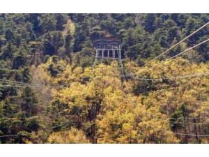 惊险!刺激!这个夏天来山叶口景区挑战高空滑索!