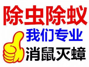 济宁地区上门灭鼠服务专业捕鼠公司抓杀除灭老鼠灭蟑螂灭虫