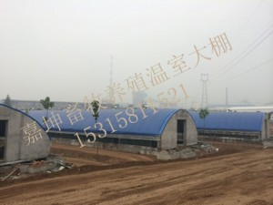 鸡场自动化恒温大棚 畜牧养殖温室大棚建设 大棚供应商