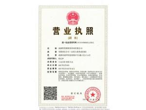 成都公司注销 工商注册 代理记账 代办执照 执照 税务注销
