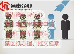 代办粤港两地车牌香港驾照办理业务