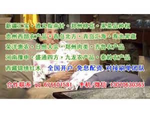 青岛汇海行情规律研究开户选择市场果蔬郑棉配资交易战法修炼