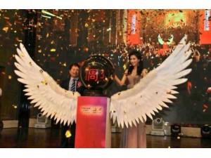 北京翅膀升降启动台