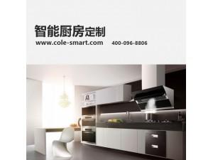 别墅智能家居智能厨房系统设计安装