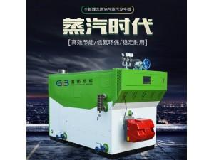 厂家直销600KG节能环保燃油气蒸汽发生器-全自动蒸汽发生器