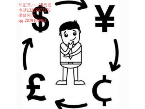 艾福:外管局国际收支司原司长管涛:未来外汇政策的三种前景