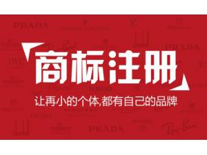 内资公司 外资公司 集团公司 香港公司 海外公司注册