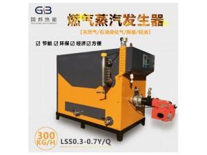 厂家直销国邦锅炉300KG低氮燃气蒸汽发生器
