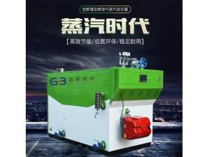 厂家直销600KG节能环保燃气蒸汽锅炉   燃气蒸汽发生器