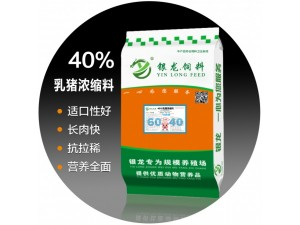 河北省邢台市会宁镇银龙浓缩料乳猪40%保育饲料