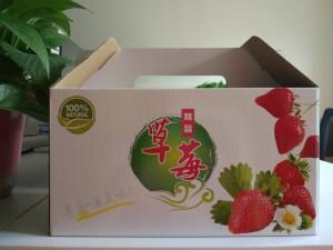 草莓纸箱包装