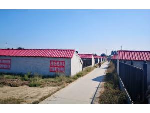 转让蔬菜大棚紧邻北京18公里处
