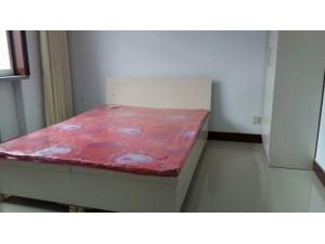 开发区国际新城,一层,次卧家具电器600左右