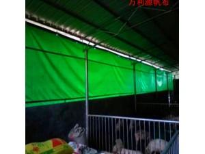 大型牛场卷帘布哪家好/羊场卷帘防风布定做价格/猪场保温布图片