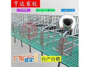 养猪设备产床定位栏料线厂家直销