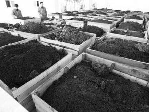 上海固废处理公司,上海工业垃圾处理,上海绿杨环保科技有限公司