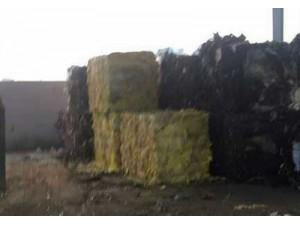 吴江固废处理价格,吴江固废处理厂家,吴江绿杨环保科技
