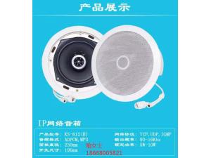杭州IP网络吸顶喇叭