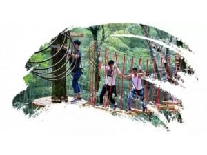 唐山周边地区想玩丛林穿越的赶紧到山叶口景区集合!