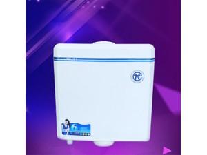蹲便器水箱手按式蹲便器水箱3-6L卫生间蹲便器水箱工程水箱