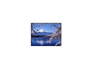 西安日语翻译公司-有日本人译员的翻译公司