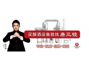 酒坊小作坊农村创业型全自动酿酒设备安徽淮北