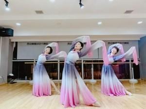 西安北郊古典舞培训班专业古典舞教练班