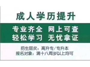 深圳成人高考、高升专、专升本、学历提升