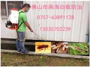 南海桂城平洲娱乐餐饮行业杀虫杀蟑螂灭鼠灭四害
