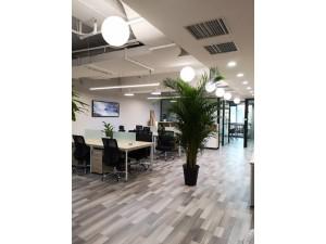 华龙大厦精装办公室175平210平空房出租