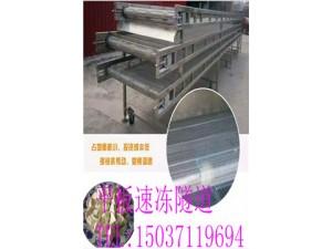 食品输送设备   饺子速冻机  不锈钢输送带