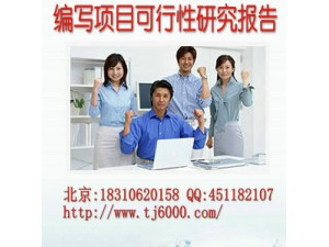 四川省成都市代写项目可行性研究报告