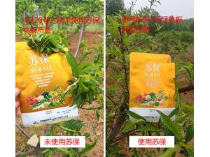 怎样有效地提高作物的产量,使农作物增长增收