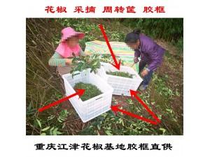 重庆江津花椒筐厂家 花椒筐好多钱一个 花椒筐批发